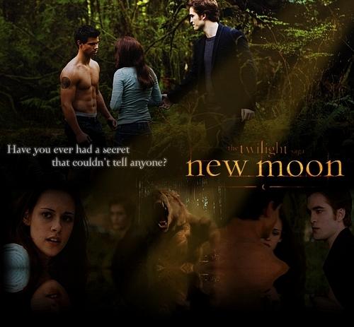 Fanmande - New Moon -