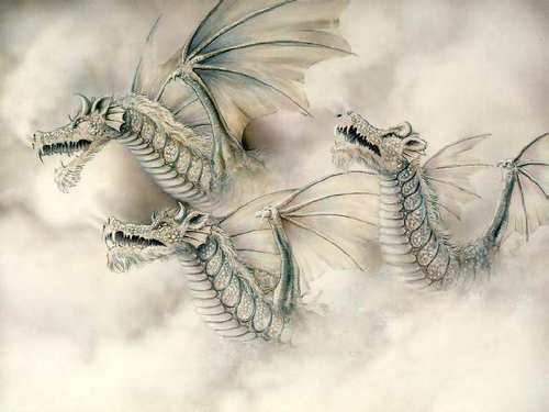 Fog  Dragon - dragons Photo