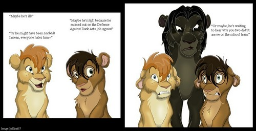 Harry Potter/Lion King Picture
