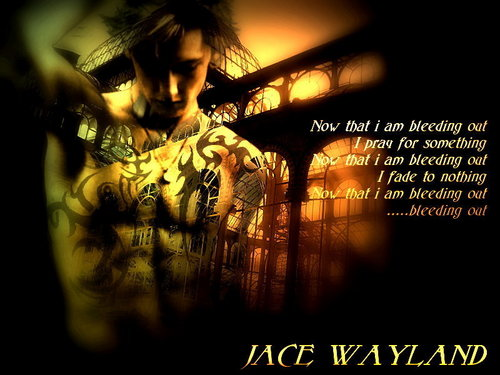 City Of Bones wallpaper with a concert titled Jace