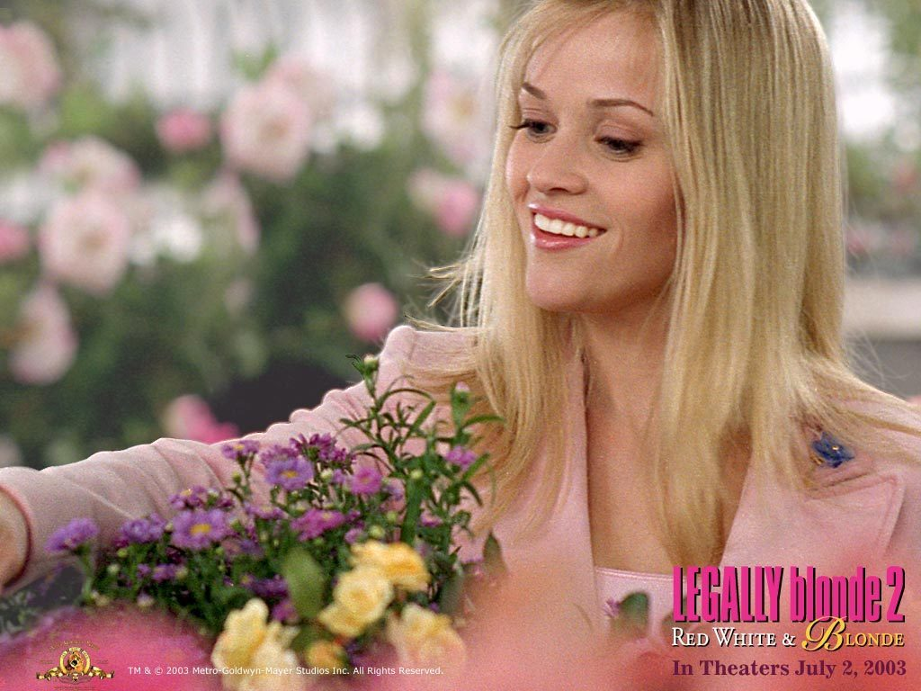 Legally Blonde Images 45