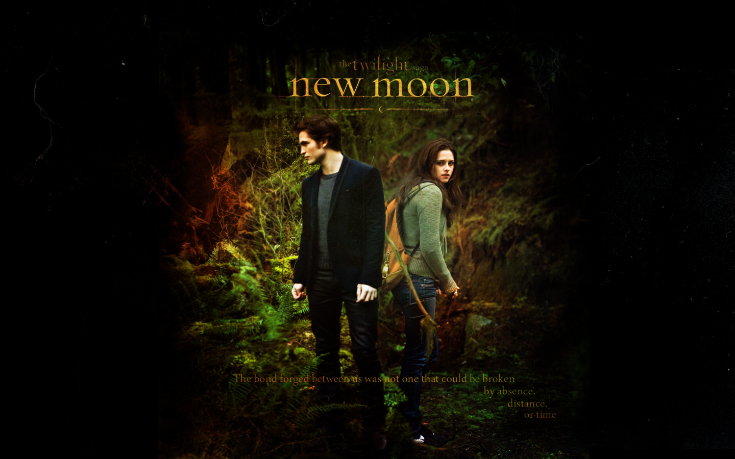 http://images2.fanpop.com/image/photos/8700000/New-Moon-twilight-series-8799495-1440-900.jpg