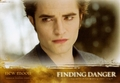 New Tradin card - twilight-series photo