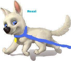 Roxxi the dog