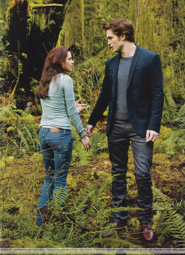 Scans - People Twilight Collector's Edition