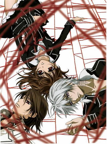 vampire knight wallpaper possibly containing animê entitled Vampire Knight