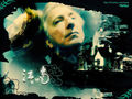 alan rickman - alan-rickman wallpaper