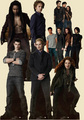 new-moon-stand-ups - twilight-series photo