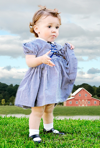 Adorable Toddler Girl On A Farm