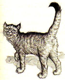động vật in Septimus Heap