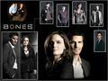 Bones Characters
