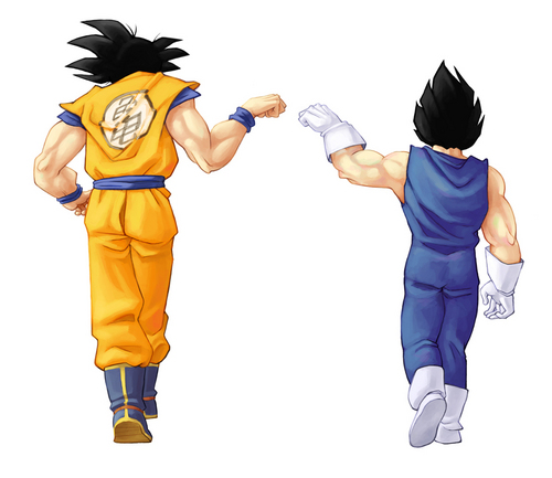 Dragon Ball Z wallpaper entitled Bros