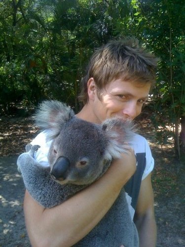 Charlie Bewley wallpaper with a koala called Charlie