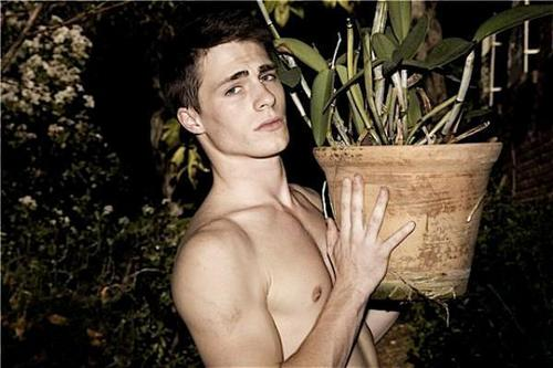 Colton Haynes wallpaper titled Colton
