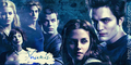 Cullen Brothers - twilight-series photo