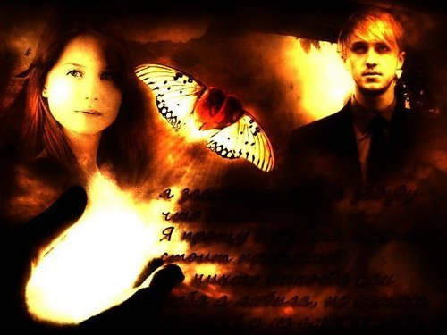 Draco and Ginny 壁紙 entitled Draco&Ginny