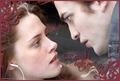 Edward-Bella - twilight-series photo