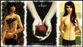 Edward&Bella - twilight-series photo