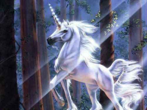 Unicorns wallpaper called Forest Unicorn