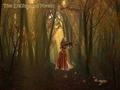 Mairead in the Enchanted Forest 2 - celtic-woman wallpaper