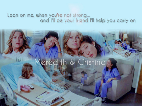 Grey's Anatomy پیپر وال titled Meredith & Cristina