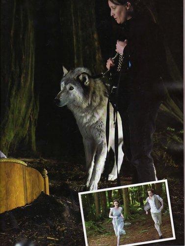November 2009: Best Movie