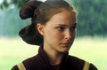 Padme - padme-naberrie-amidala-skywalker photo