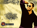 Tamer - tamer-hosny wallpaper