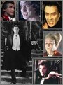 Various Dracula collage - dracula fan art
