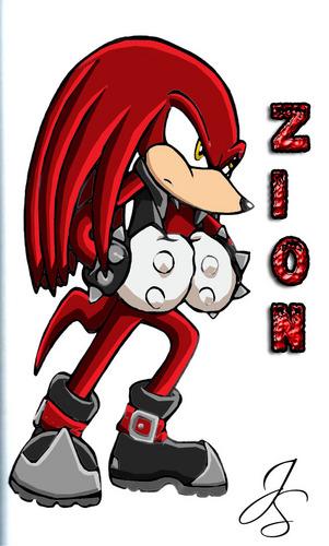 Zion the Echidna