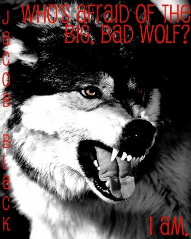 bid bad wolf