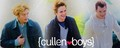 cullen boys - twilight-series photo