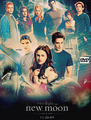 new-moon - twilight-series photo