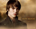 official wallpaper - Alec - twilight-crepusculo wallpaper