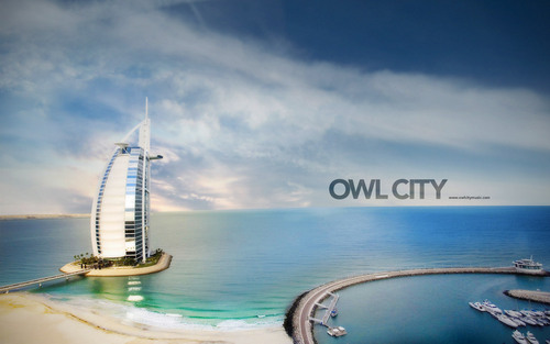 owl city <3