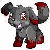 the perrito, cachorro i wish i had