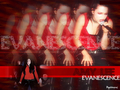 evanescence - xEVANESCENCEXx wallpaper