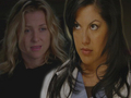 Arizona & Callie - greys-anatomy wallpaper