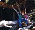 Ashley Greene, Kellan Lutz and Rachelle Lefevre in November Self Magazine Issue - twilight-series photo