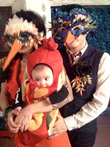 Bandit's First Halloween