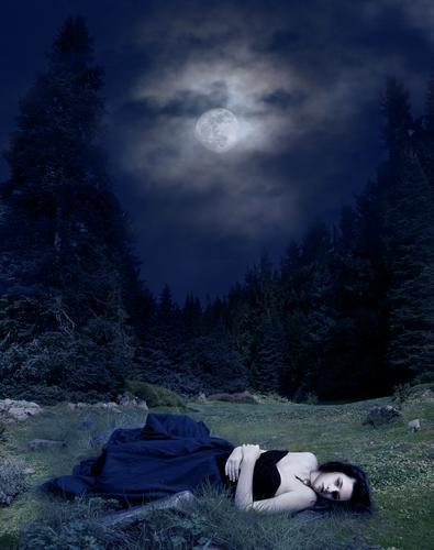 Bella in the Moon Light