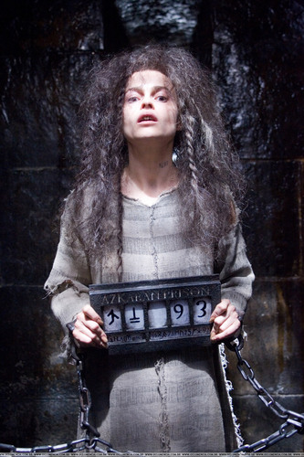 Bellatrix Lestrange fond d'écran probably with a fourrure manteau titled Bellatrix OOTP