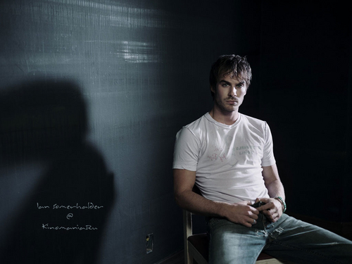Damon Salvatore wallpaper possibly containing a sign and a pantleg titled Damon Salvatore