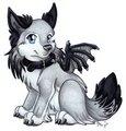 Demon_wolf - demon_wolf photo