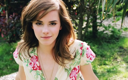 Emma Watson Hintergrund containing a portrait called Emma Watson