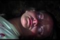 Evil Dead - evil-dead screencap