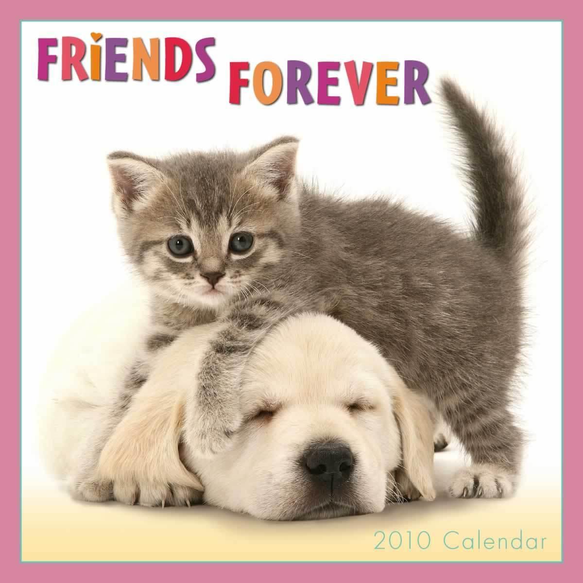 I Heart Dogs Furever Friends