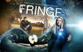 Fringe Season 2 - fringe wallpaper