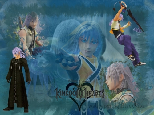 KH2 - kingdom-hearts-2 Wallpaper