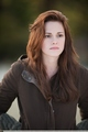 NEW!!!! New Moon HIGH QUALITY Stills - twilight-series photo